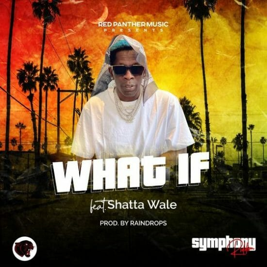 Shatta Wale – What If [Music]